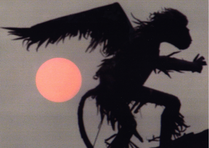 winged monkey at sunset - Huoppi Photo